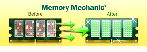 Memory Mechanic - Before/After